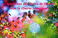 http://dc152.4shared.com/img/G7FVcIuy/s7/0.775092111452704/Les_spcificits_des_droits_de_l.png